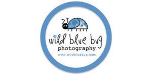 wild-blue-bug-photography